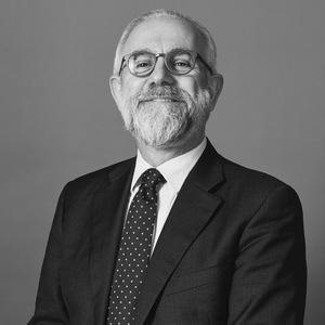 Domenico Bocchini